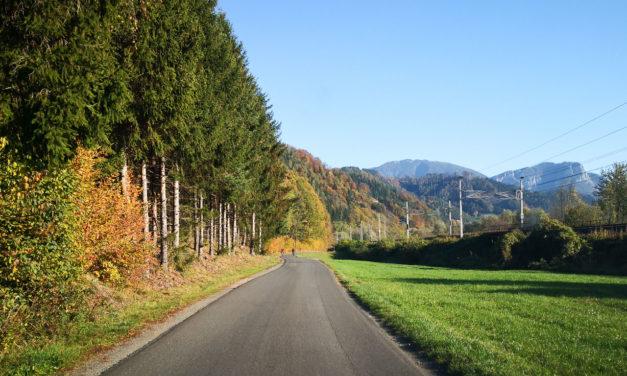 Die schönsten Radtouren in Österreich
