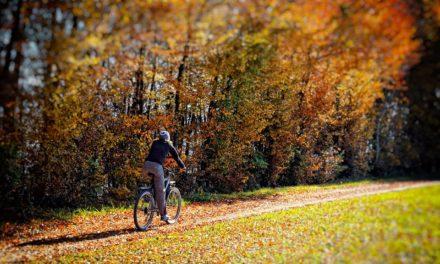 Radfahren im Herbst: Tipps für sichere Radtouren