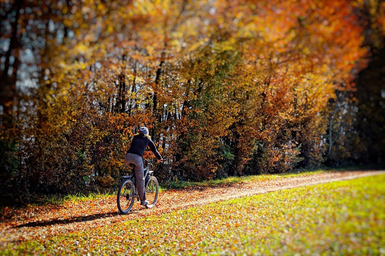 Radfahren im Herbst: Tipps für sichere Radtouren iFahrrad.at